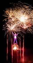 Firework Palmtrees Over Man