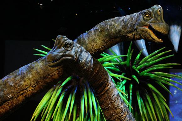 Brachiosaurs580
