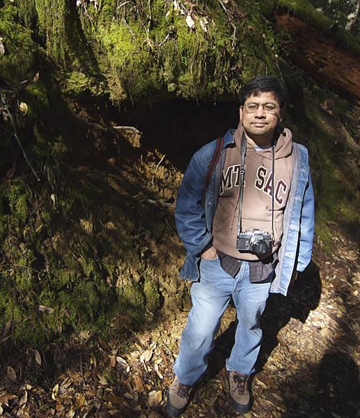 Redwoodarielfw